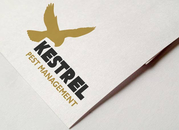 Kestrel Pest Management branding and logo design